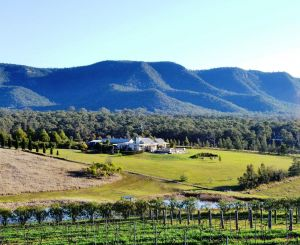 Grapevines Boutique Accommodation - Accommodation Bookings