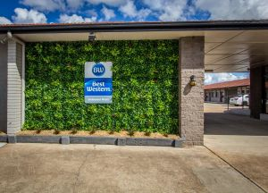 Best Western Endeavour Motel - Accommodation Bookings