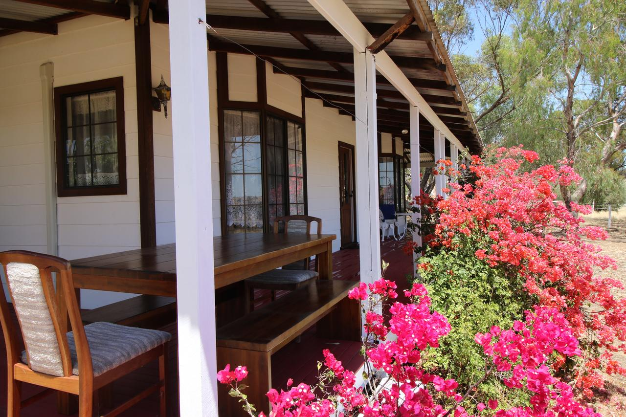 Daisy Cottage - Accommodation Bookings