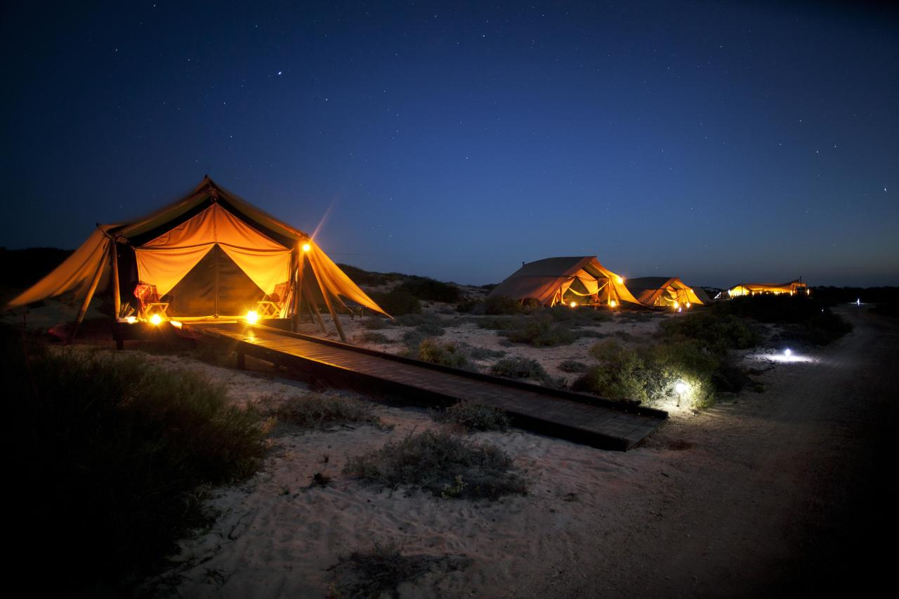 Sal Salis Ningaloo Reef - Accommodation Bookings