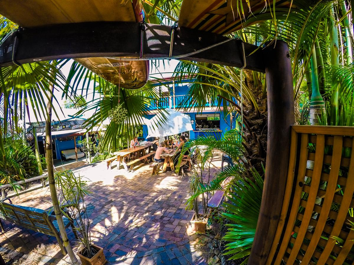 Cool Bananas Backpackers - Accommodation Bookings